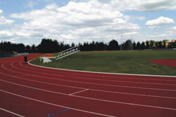 Sport and athletic fields